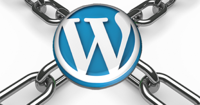 Logo Sicurezza Wordpress